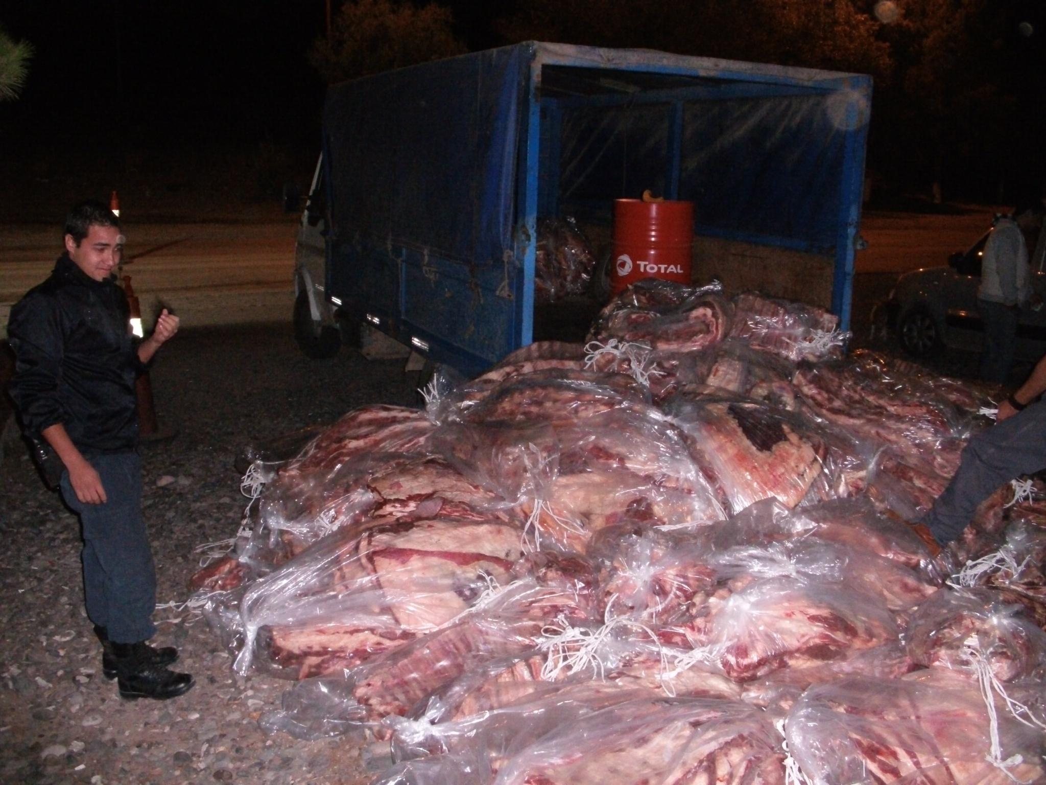Incautaron 60 kg de carne y un camión con 3 toneladas de leña en Puente Dique