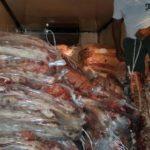 Decomisan 3500 kilos de carne en Casa de Piedra